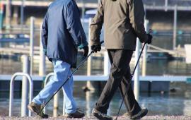 WPŁYW NORDIC WALKING NA CZYNNOŚĆ UKŁADU ŻYLNEGO KOŃCZYN DOLNYCH U SŁUCHACZEK UNIWERSYTETU TRZECIEGO WIEKU