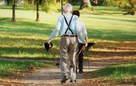 Badania naukowe. Efekty badań nad Nordic Walking